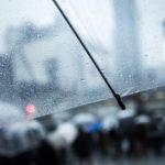 【連絡】雨ですが、元気に営業してますよ〜!!